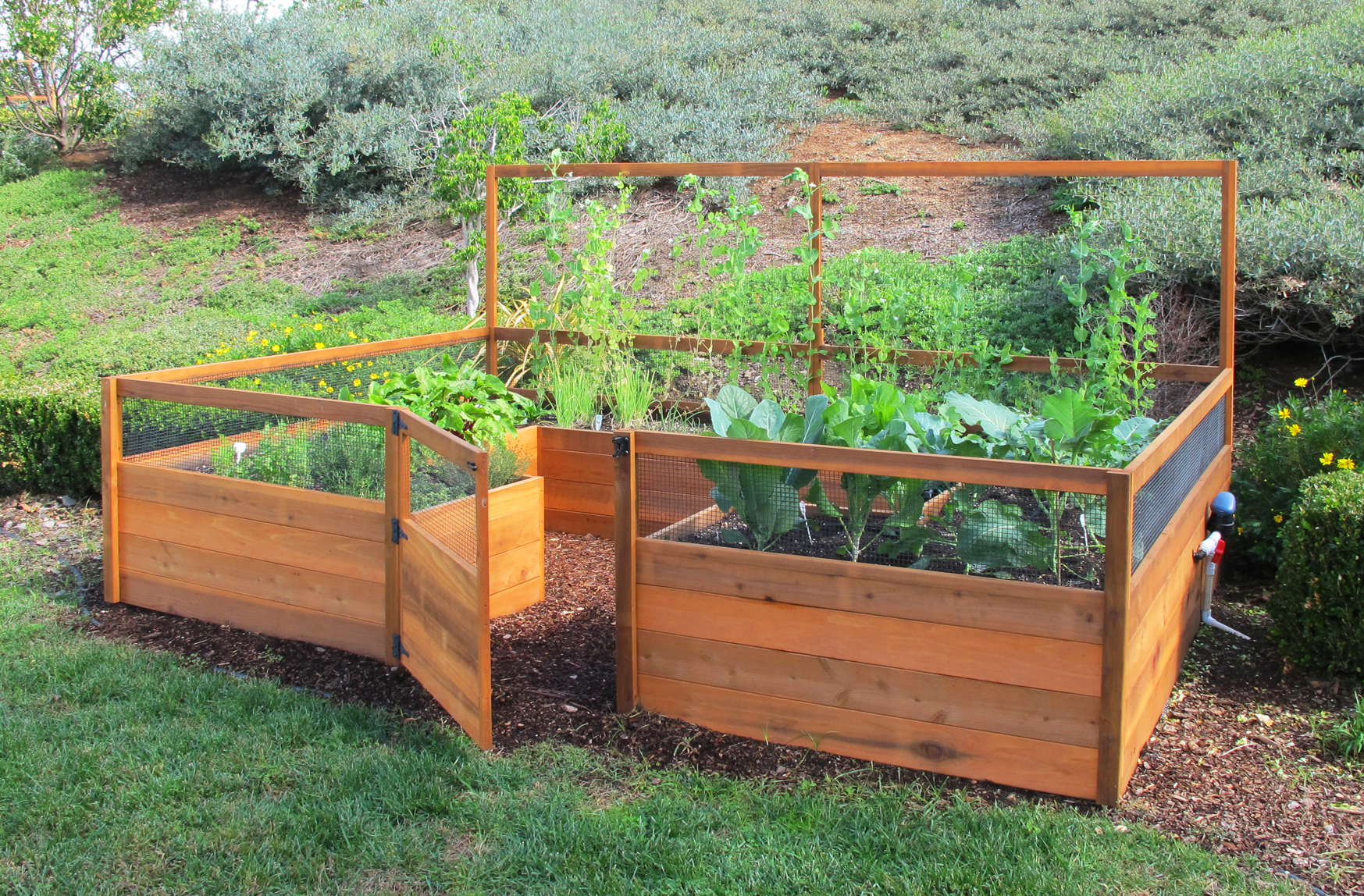 Free Raised Bed Vegetable Garden Plans Janderson99 28 Planning A