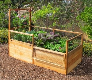 3x6-raised-garden-bed-single-trellis-1