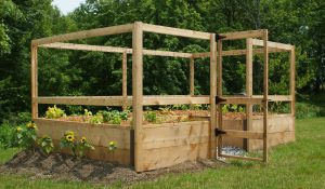 8x12 just add lumber vegetable garden kit deer proof